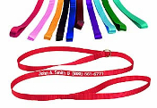 Personalized Screen Print Leashes